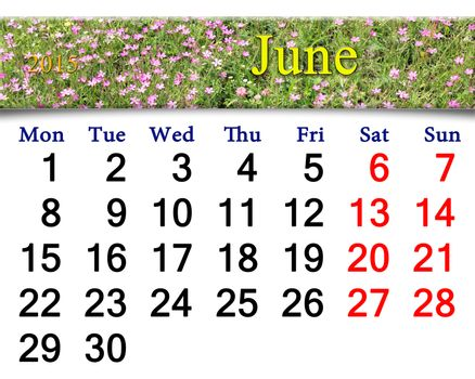 calendar for June of 2015 year with wild carnation