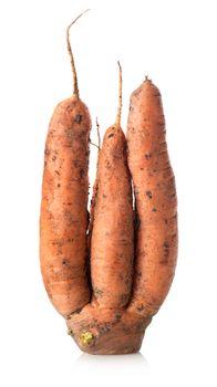 Figured carrot