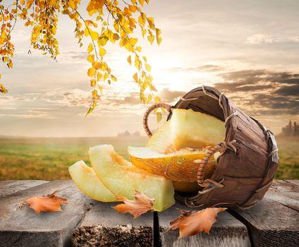 Melon and landscape