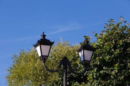 streetlight against trees of the blue sky