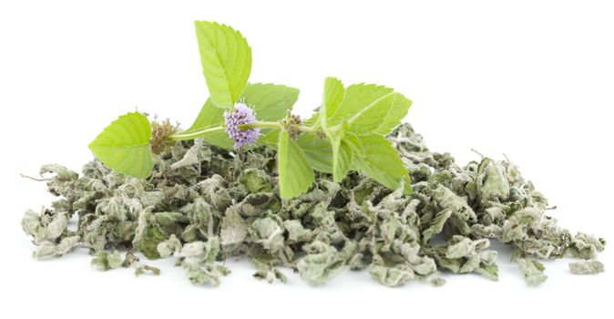 fresh and dry spearmint on white background