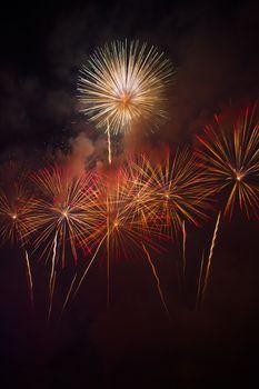 Colorful fireworks over dark sky
