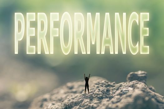 concept of performance