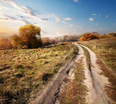 Autumn and road