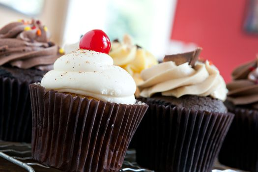 Decadent gourmet cupcakes frosted with a variety of flavors. Shallow depth of field.