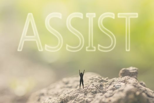 concept of assist