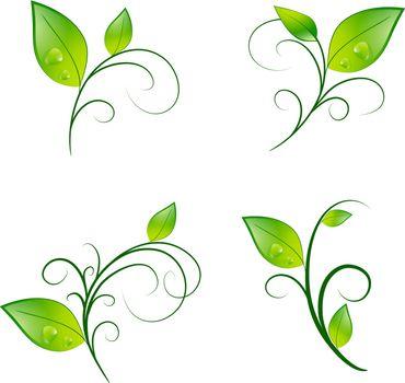 Green Vitality Leaf Floral Decoration Eco Set