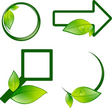 Different Eco Label Signs With Green Leaves Over White Background