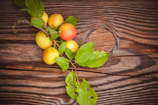 wild yellow plum with leafs  on wooden background