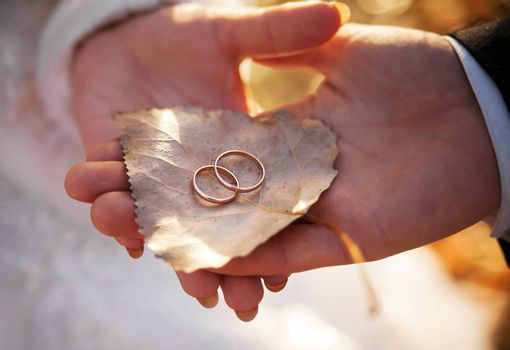 Bride and groom are holding birch leaf with gold wedding rings