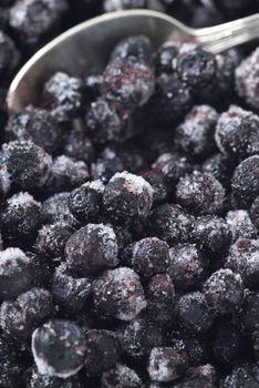 Frozen Blueberry