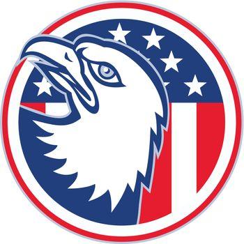 eagle head american stars stripes flag