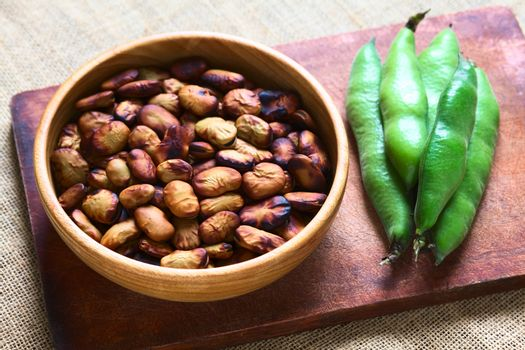 Roasted Broad Beans
