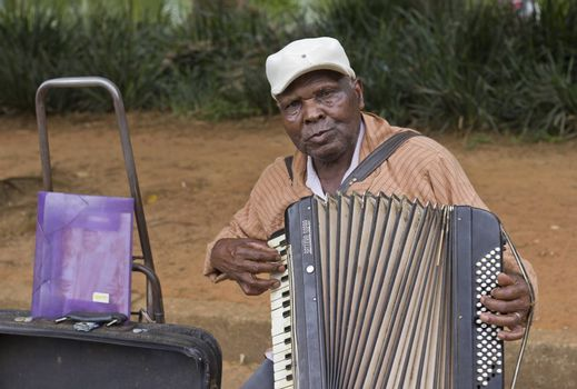 SAO PAULO, BRAZIL - FEBRUARY 01, 2015: An unidentified street musician singing and playing one old accordion in the Ibirapuera Park at Sao Paulo Brazil.