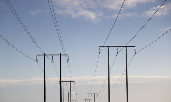 Electricity Pylons Trailing Away