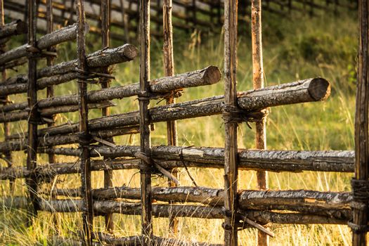 Old Wooden Fence with Tall Grass