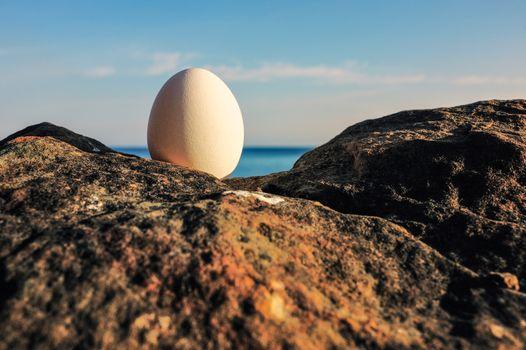 Egg between of the boulders