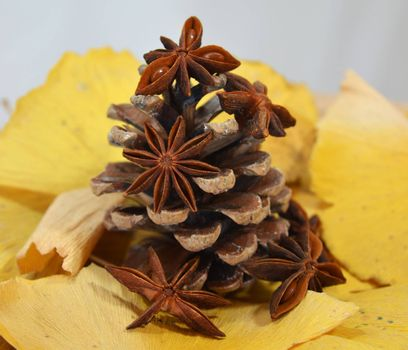 Fir cone decorated with anise on autumn leaves
