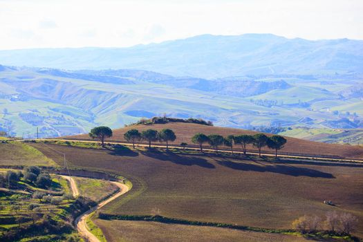 View of plowed field in the Leonforte countryside, Sicily