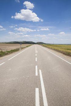 rural road through horizon