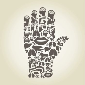 Hand made of body parts. A vector illustration