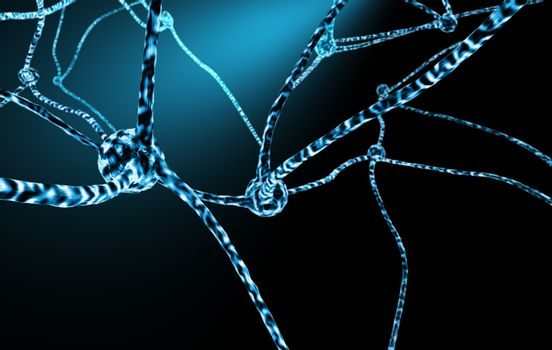 Nerve Cells And Neuronal Network
