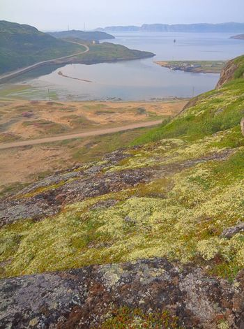 Northern landscapes on shores of the Barents sea