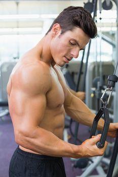 Shirtless muscular man using triceps pull down in gym