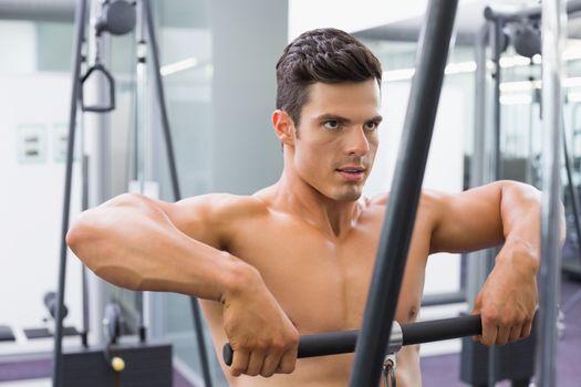 Shirtless muscular man using biceps pull up in gym