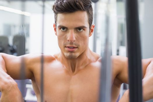 Determined shirtless young muscular man in gym