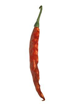 Chili pepper, Red Chili