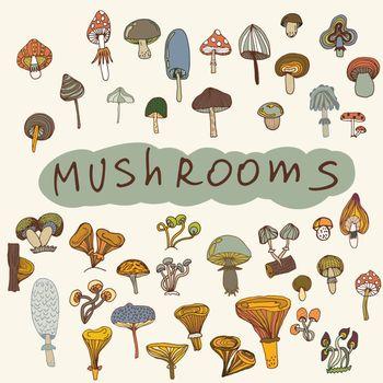 Set of hand-drawn mushrooms