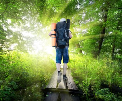 Traveller on a small bridge in green forest