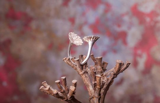 Close up of silver ring, manufactured by Ornella Salamone