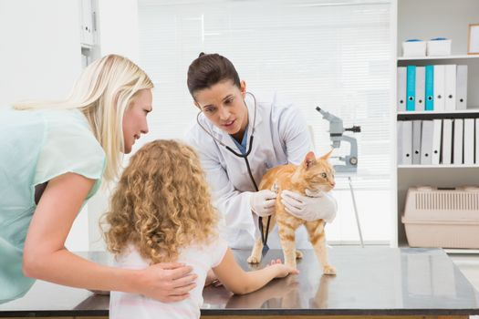 Veterinarian examining a cat with its owners in medical office