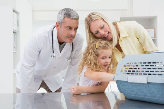 Veterinarian and cat owner looking at cat in medical office