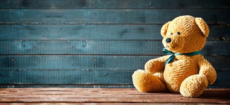 Cute Teddy Bear Panorama