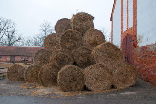 Straw bales on farmland. Ranch for breeding horses. Kaliningrad region. Russia.