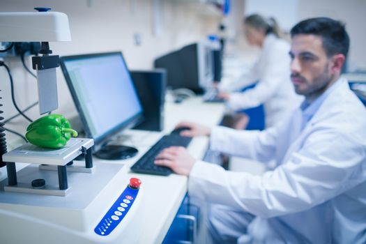 Food scientist using technology to analyse pepper