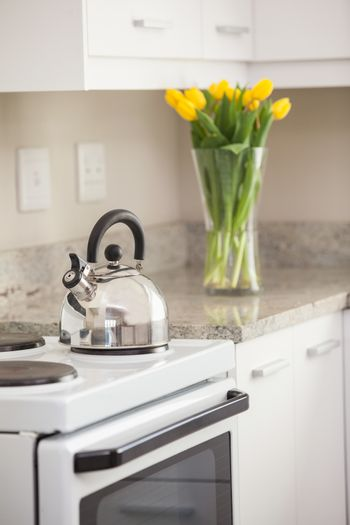 Close up of kettle on the kitchen stove