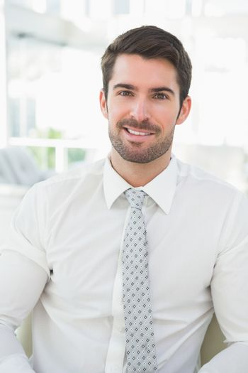 Portrait of a smiling businessman well dressed