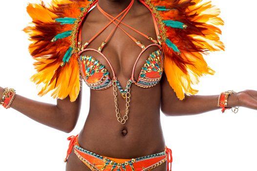 Perfect costume for samba dance.