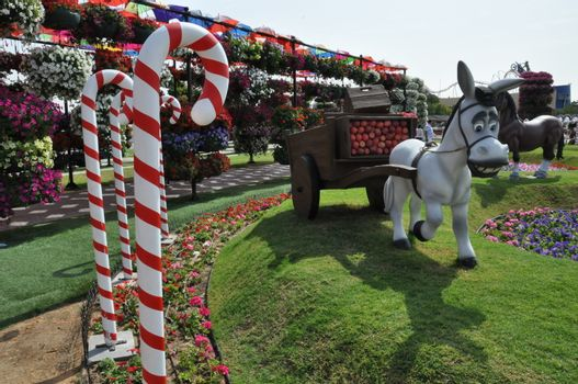 Dubai Miracle Garden in the UAE. It has over 45 million flowers.