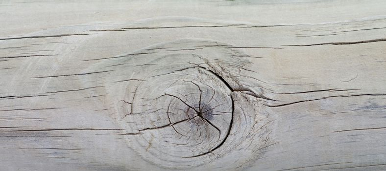 Stain Knot Wooden Background