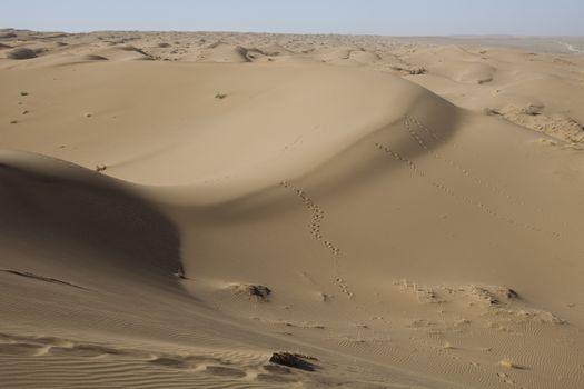 Dunes, wonderful saturated travel theme