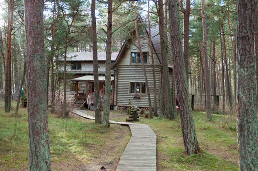 Old wooden house in the woods. Autumn season. Pine forest.