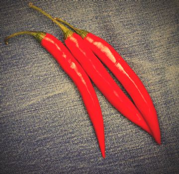 red hot chili pepper on jeans background. instagram image style