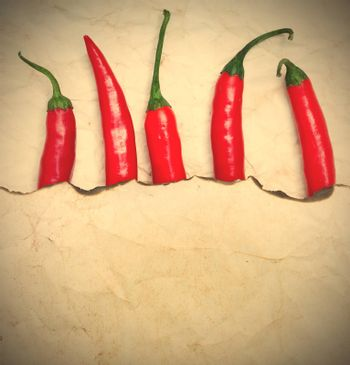 fiery red chili peppers under a sheet of paper with the scorched edge, instagram image style