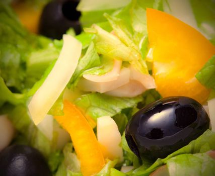 Assorted salad of green leaf lettuce with squid and black olives, close up. Instagram image retro style