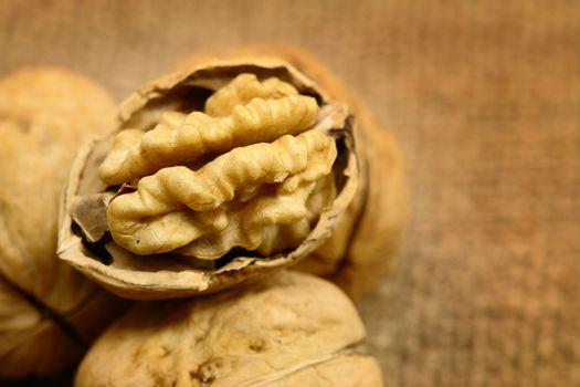 Peeled Walnut